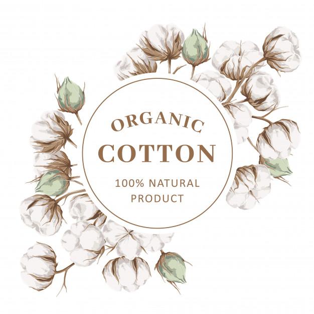 vải cotton organic